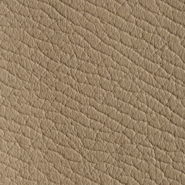 Click here to view a larger picture of Dollaro Dark Beige